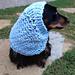 Loom Knit Dog Snood pattern