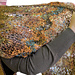 VIning Branches Wrap & Dune Serape pattern