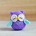Mr. Murasaki Owl Amigurumi pattern
