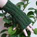 Green Forest Mitts pattern