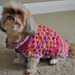 Bella Dog Sweater pattern