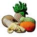 Hawaiian Fruit Set pattern
