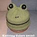 Easy Fun Froggy Hat pattern