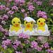 Amigurumi Easter Chicks, Eggs, and Shells pattern