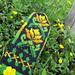 Summer Lilies - Vasaros Lelijos pattern