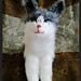 Bulu the Long Haired Kitten pattern