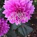Altman's Yarn Crawl CAL pattern