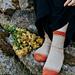 Sank socks pattern