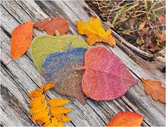 Linden leaf ornament. Autumn colors.
