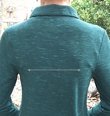 Where to measure across the back
