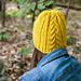 Killadoon Hat pattern