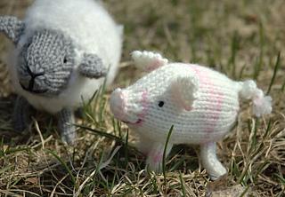 Hamingway the Pig