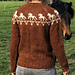 Sweater with Horses pattern