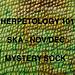 Herpetology 101 pattern