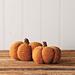 Spice & Clove Knit and Crochet Pumpkins pattern