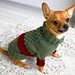 Elf Dog Sweater pattern