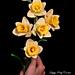 Trumpet Daffodil Flower pattern