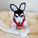 Small Amigurumi Siberian Husky Dog pattern