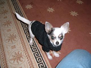 Maci's Sweater 1