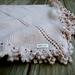 mini purl pattern