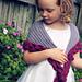 Rose Petal Wrap pattern