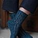 Danima banksiae Sock pattern