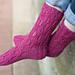 Serpula contortuplicata Sock pattern