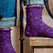 Dianthus superbus Socks pattern