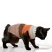 Small Pet Stripy Sweater pattern