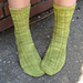 Prickly Pear Socks pattern