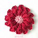 Ameera Flower (day 211 of 365) pattern