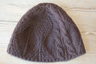 fishtrap swatch cap