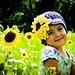 Sunflower Beanie pattern