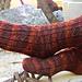 Phoenix Tears HP Themed Socks pattern