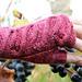 Wine Trail Mittens pattern