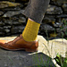 Parkamoor Socks pattern