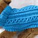 Celtic Doggie Zig Zag Rib Dog Sweater pattern