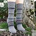 Vincennes Socks pattern