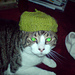 Cat Beret for Tigu pattern