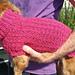 Waffle Stitch Mini Dachshund Sweater pattern