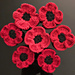 Remembrance Day Poppy pattern