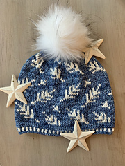 Silver Fern Hat  -  -  -  -  -  -  -  Size: Adult Large   -    -  -  -  -  -  -Yarn:  Malabrigo Rios