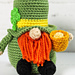 St. Patrick's Day Gnome pattern