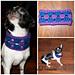 Granny Cowl 4 Pup pattern