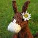 Hannibal the Donkey pattern