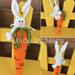 Wall Hanging - Bunny on a Carrot Amigurumi pattern