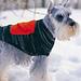 Dog Coat With Cargo Pocket pattern