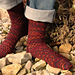 Evey's Friendship Socks pattern