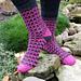 Zinger Socks pattern