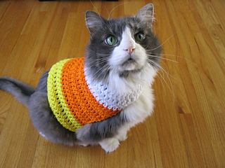 candy corn cat
